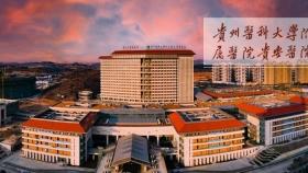 省卫健委党组书记杨慧到贵州医科大学附属医院贵安医院考察