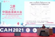 血液科主任王季石受聘中国医师协会血液科医师分会常委